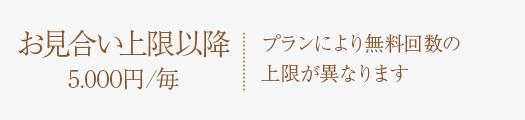 お見合い上限以降 5.000円/毎